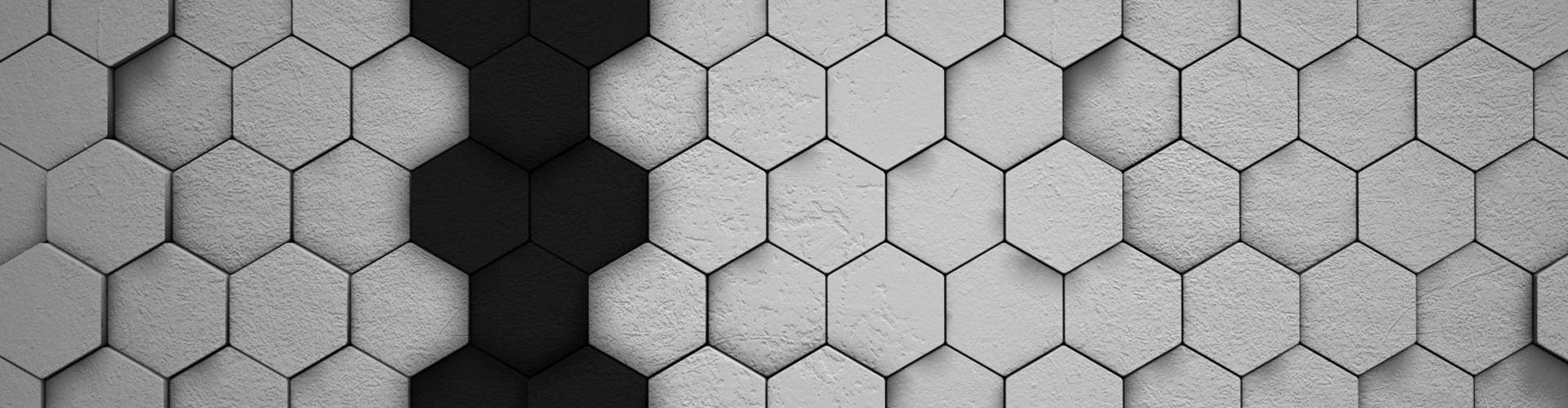 static/img/hexagon.jpg